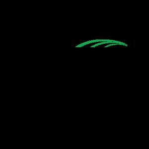 PCSI_20_Year_Logo